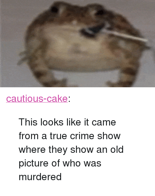 """old picture: <p><a class=""""tumblr_blog"""" href=""""http://cautious-cake.tumblr.com/post/134325308198"""">cautious-cake</a>:</p> <blockquote> <p>This looks like it came from a true crime show where they show an old picture of who was murdered</p> </blockquote>"""