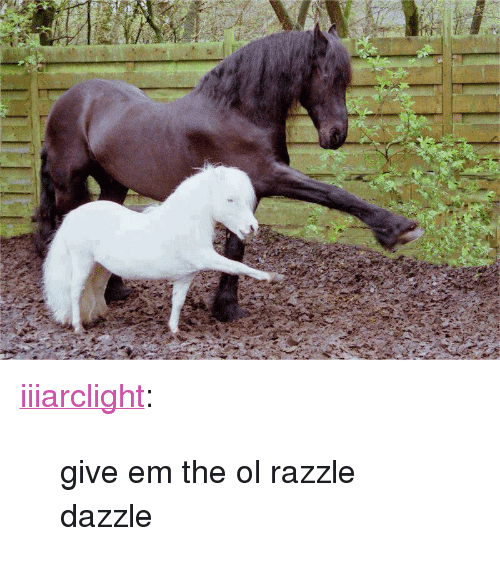 "Tumblr, Blog, and Http: <p><a class=""tumblr_blog"" href=""http://iiiarclight.tumblr.com/post/79349781808/give-em-the-ol-razzle-dazzle"">iiiarclight</a>:</p> <blockquote> <p>give em the ol razzle dazzle</p> </blockquote>"