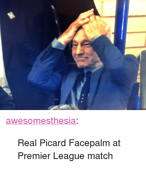 """picard: <p><a href=""""http://awesomesthesia.tumblr.com/post/173746338193/real-picard-facepalm-at-premier-league-match"""" class=""""tumblr_blog"""">awesomesthesia</a>:</p>  <blockquote><p>Real Picard Facepalm at Premier League match</p></blockquote>"""