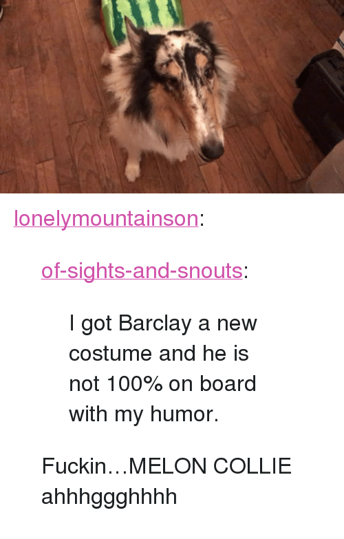 "barclay: <p><a href=""http://lonelymountainson.tumblr.com/post/166522212446/of-sights-and-snouts-i-got-barclay-a-new"" class=""tumblr_blog"">lonelymountainson</a>:</p><blockquote> <p><a href=""https://of-sights-and-snouts.tumblr.com/post/166451500136/i-got-barclay-a-new-costume-and-he-is-not-100-on"" class=""tumblr_blog"">of-sights-and-snouts</a>:</p>  <blockquote><p>I got Barclay a new costume and he is not 100% on board with my humor.</p></blockquote>  <p>Fuckin…MELON COLLIE ahhhggghhhh</p> </blockquote>"