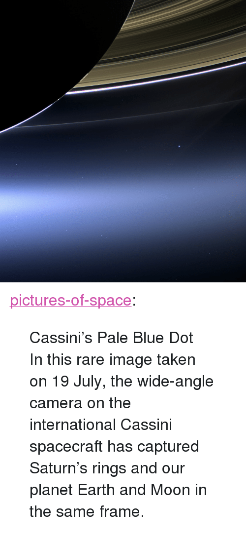 "cassini: <p><a href=""http://pictures-of-space.tumblr.com/post/149678822990/cassinis-pale-blue-dot-in-this-rare-image-taken"" class=""tumblr_blog"">pictures-of-space</a>:</p>  <blockquote><p>  Cassini's Pale Blue Dot</p><p>In this rare image taken on 19 July, the wide-angle camera on the international Cassini spacecraft has captured Saturn's rings and our planet Earth and Moon in the same frame.</p></blockquote>"