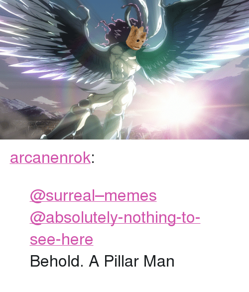 "pillar: <p><a href=""https://arcanenrok.tumblr.com/post/166190368517/surrealmemes-absolutely-nothing-to-see-here"" class=""tumblr_blog"">arcanenrok</a>:</p>  <blockquote><p><span><a href=""https://tmblr.co/mQi_a3EREJHSg0vnJ26d70A"">@surreal–memes</a></span></p><p><span><a href=""https://tmblr.co/m1UEF8gC3JLDgkBl1Sa_Isw"">@absolutely-nothing-to-see-here</a></span></p><p>Behold. A Pillar Man</p></blockquote>"