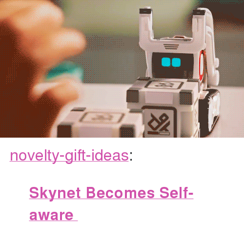 "Tumblr, Blog, and Com: <p><a href=""https://novelty-gift-ideas.tumblr.com/post/158405591953/skynet-becomes-self-aware"" class=""tumblr_blog"">novelty-gift-ideas</a>:</p><blockquote><p><b><a href=""https://novelty-gift-ideas.com/cozmo"">  Skynet Becomes Self-aware </a><br/></b></p></blockquote>"