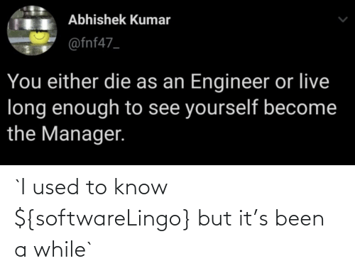 While: `I used to know ${softwareLingo} but it's been a while`