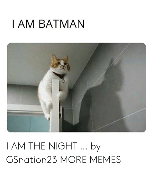 Dank, Memes, and Target: Ι ΑM ΒAΤΜΑN I AM THE NIGHT … by GSnation23 MORE MEMES