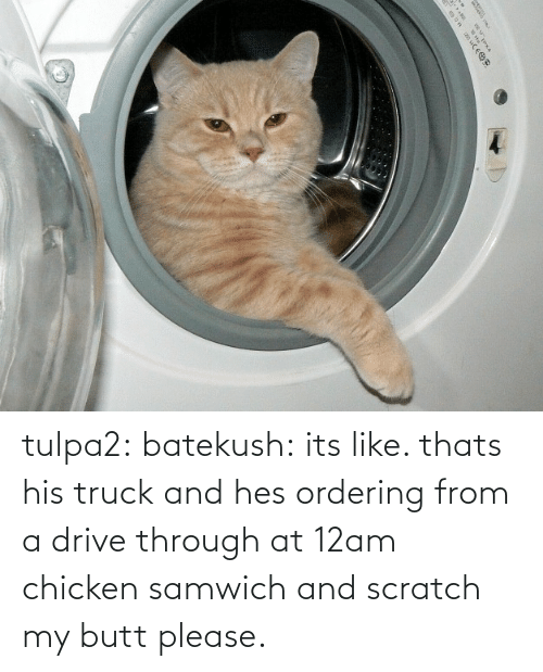 Chicken: |५ tulpa2: batekush: its like. thats his truck and hes ordering from a drive through at 12am chicken samwich and scratch my butt please.