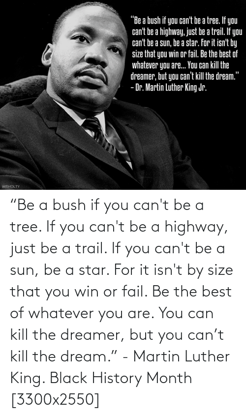 """Martin Luther King: """"Be a bush if you can't be a tree. If you can't be a highway, just be a trail. If you can't be a sun, be a star. For it isn't by size that you win or fail. Be the best of whatever you are. You can kill the dreamer, but you can't kill the dream."""" - Martin Luther King. Black History Month [3300x2550]"""