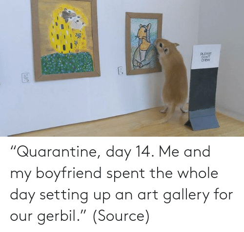 "My Boyfriend: ""Quarantine, day 14. Me and my boyfriend spent the whole day setting up an art gallery for our gerbil."" (Source)"