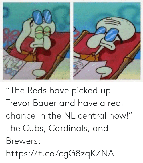 """Reds: """"The Reds have picked up Trevor Bauer and have a real chance in the NL central now!""""  The Cubs, Cardinals, and Brewers: https://t.co/cgG8zqKZNA"""