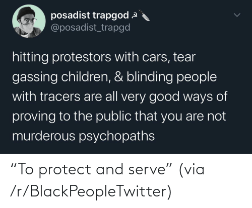 "R Blackpeopletwitter: ""To protect and serve"" (via /r/BlackPeopleTwitter)"
