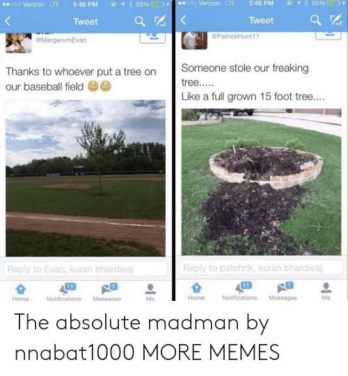 Baseball, Dank, and Memes: ④イ855% □D+  ooo Verizon LTE  5:46 PM  ⓖ  855%□コタ  ..ooo Verizon LTE  5:46 PM  Tweet  Tweet ar  @PatrickHunt11  @MargerumEvan  Thanks to whoever put a tree on Someone stole our freaking  our baseball field  Like a full grown 15 foot tree  Reply to patchrik, kuran bhardwaj  Reply to Evan, kuran bhardwa  1  1  Home  Notifications Messages  Me  Home  Notifications Messages The absolute madman by nnabat1000 MORE MEMES