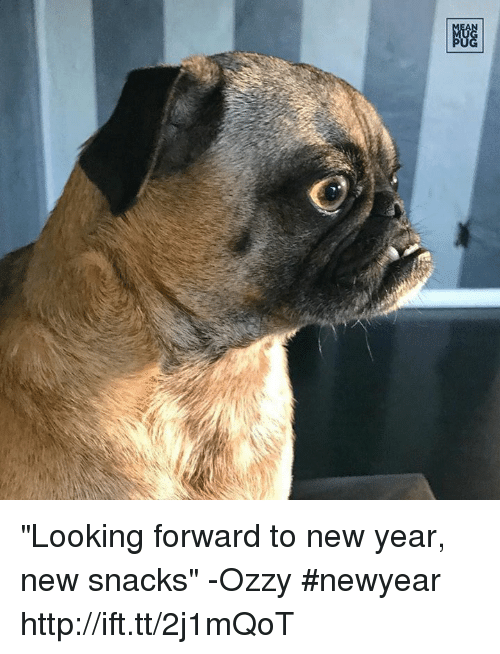 "Ozzies: 剷 ""Looking forward to new year, new snacks"" -Ozzy #newyear http://ift.tt/2j1mQoT"