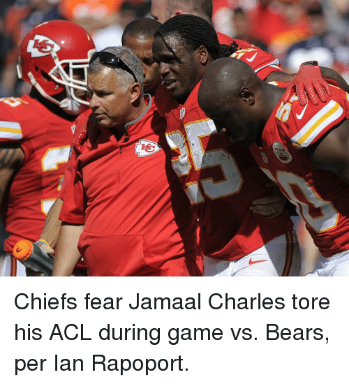 Sports, Bear, and Bears: 呛 Chiefs fear Jamaal Charles tore his ACL during game vs. Bears, per Ian Rapoport.