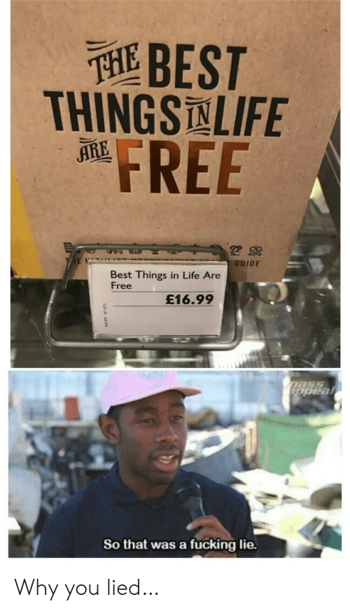 Fucking, Life, and Best: 延BEST  THINGSLIFE  FREE  ARE  GUIDE  Best Things in Life Are  Free  £16.99  mass  appeal  So that was a fucking lie. Why you lied…