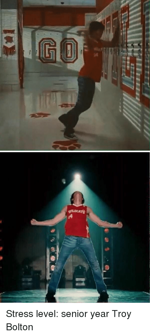 Girl Memes, Senior Year, and Troy: 笈   WILDCATS Stress level: senior year Troy Bolton