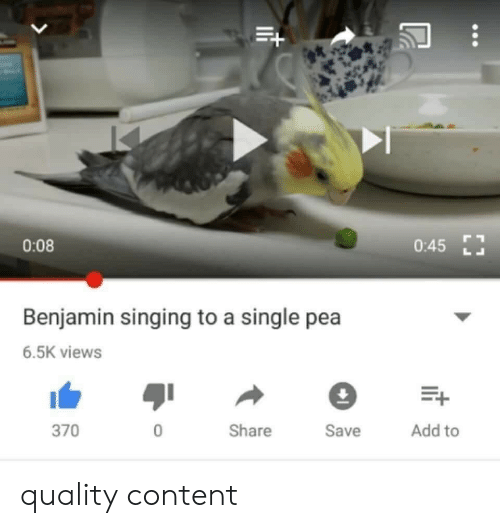 Singing, Content, and Single: 0:08  0:45  Benjamin singing to a single pea  6.5K views  E+  Add to  370  0  Share  Save quality content