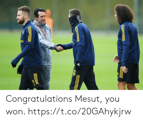 Memes, Congratulations, and 🤖: 0  20 Congratulations Mesut, you won. https://t.co/20GAhykjrw