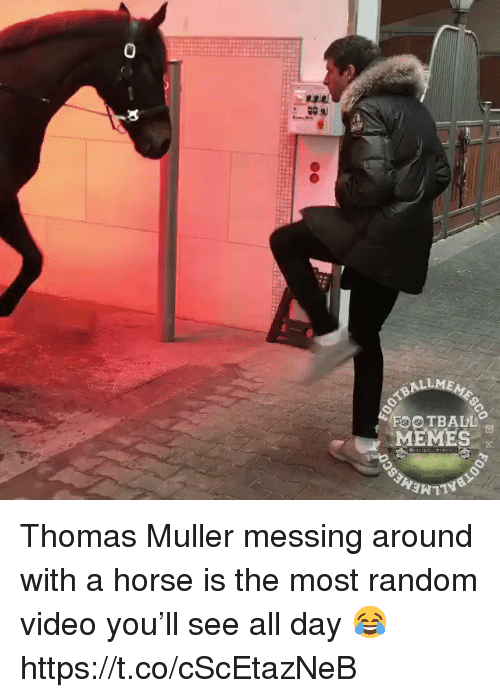 thomas muller: 0  ALLME  FOOTBALL  MEMES Thomas Muller messing around with a horse is the most random video you'll see all day 😂 https://t.co/cScEtazNeB