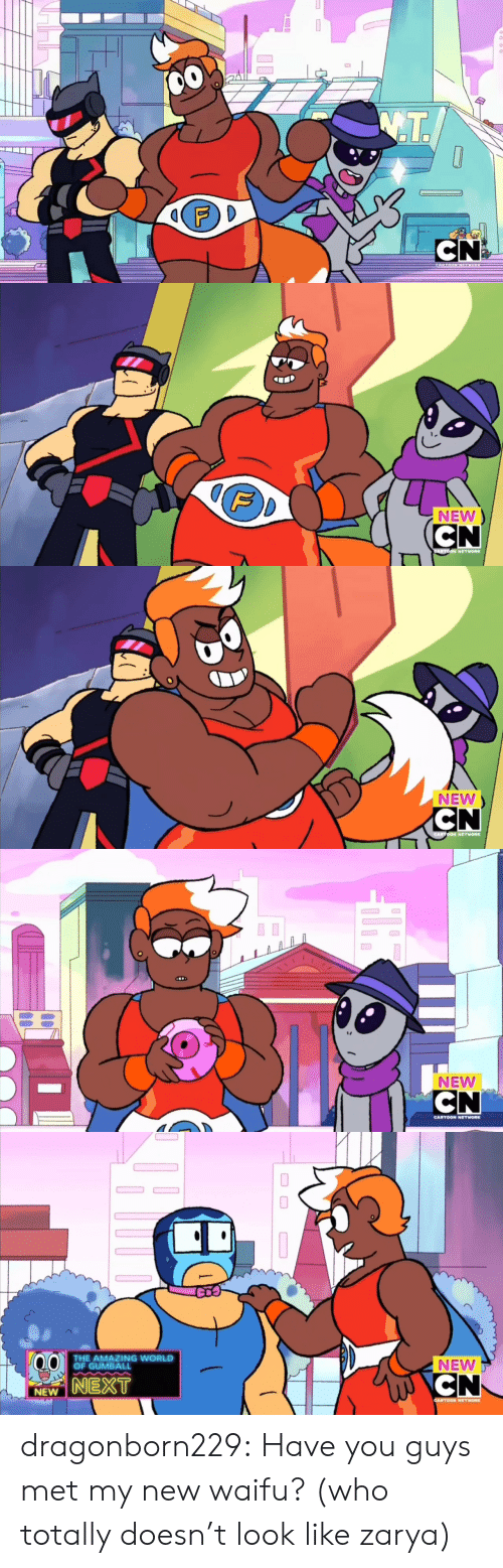 Cartoon Network, Tumblr, and Blog: 00  T.  CN2  CARTOON NGNOR   F  NEW  CN  CARTOON NETWORK   NEW  CN  CARTOON NETWORK   NEW  CN  CARTOON NETWORK   THE AMAZING WORLD  OF GUMBALL  NEW  CN  NEXT  NEW  CARTOON NETWORK dragonborn229:  Have you guys met my new waifu? (who totally doesn't look like zarya)