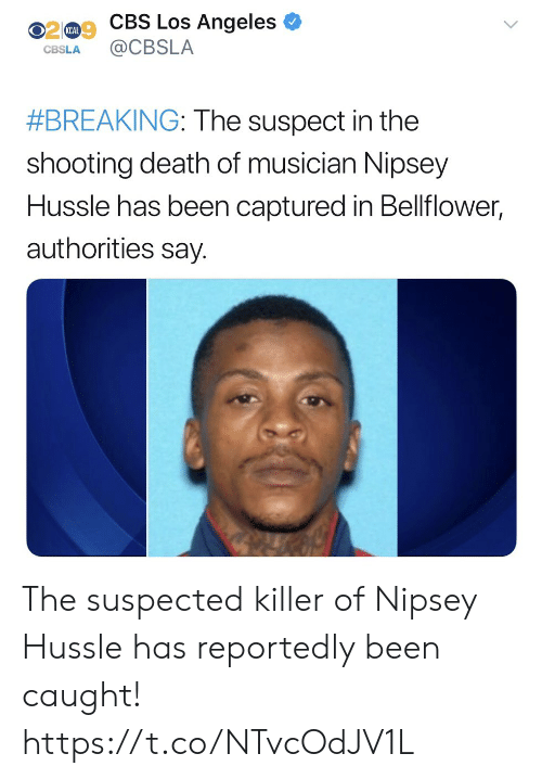 Cbs, Death, and Los Angeles: 0209 CBS Los Angeles  KCAL  CBSLA CBSLA  #BREAKING: The suspect in the  shooting death of musician Nipsey  Hussle has been captured in Bellflower,  authorities say. The suspected killer of Nipsey Hussle has reportedly been caught! https://t.co/NTvcOdJV1L
