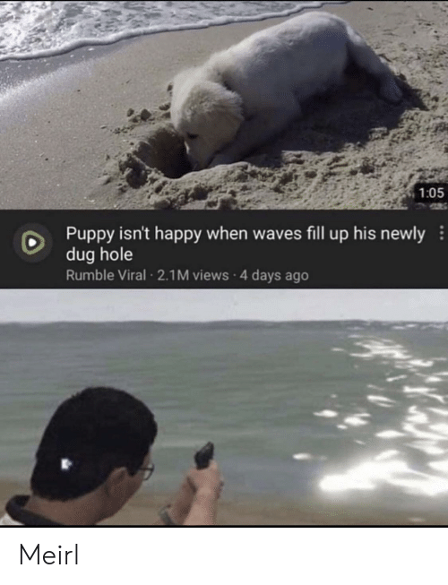 hole: 1:05  Puppy isn't happy when waves fill up his newly  dug hole  Rumble Viral 2.1M views 4 days ago Meirl