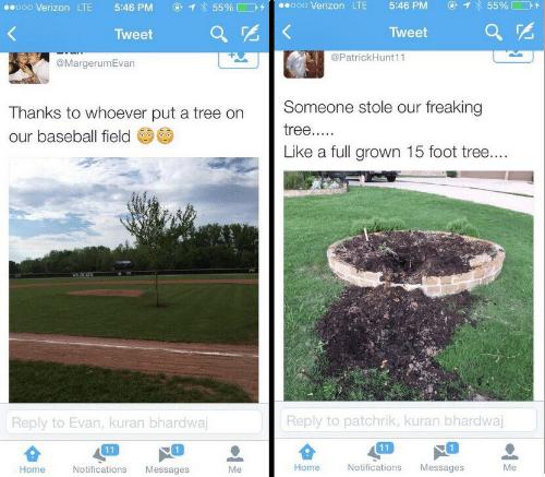 Baseball, Verizon, and Home: 1 55%  ooo Verizon LTE  5:46 PM  55%  o0o Verizon LTE  5:46 PM  Tweet  Tweet  @PatrickHunt11  @MargerumEvan  Someone stole our freaking  Thanks to whoever put a tree on  tree.....  our baseball field  Like a full grown 15 foot tree....  WLDCATS  Reply to patchrik, kuran bhardwaj  Reply to Evan, kuran bhardwaj  11  11  Notifications  Home  Notifications  Messages  Me  Home  Messages  Me