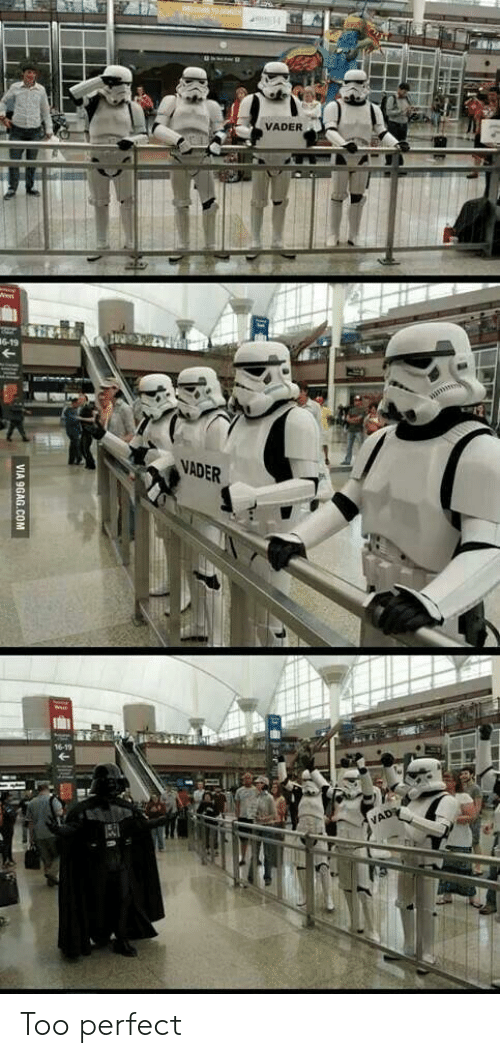 vader: 10 4  VADER  6-19  VADER  16-19  VAD  VIA 9GAG.COM Too perfect