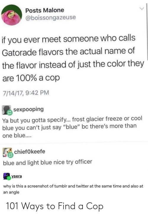 cop: 101 Ways to Find a Cop