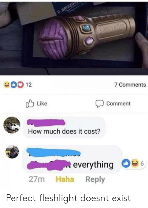 fleshlight: 12  7 Comments  Like  Comment  How much does it cost?  everything  27m Haha Reply Perfect fleshlight doesnt exist