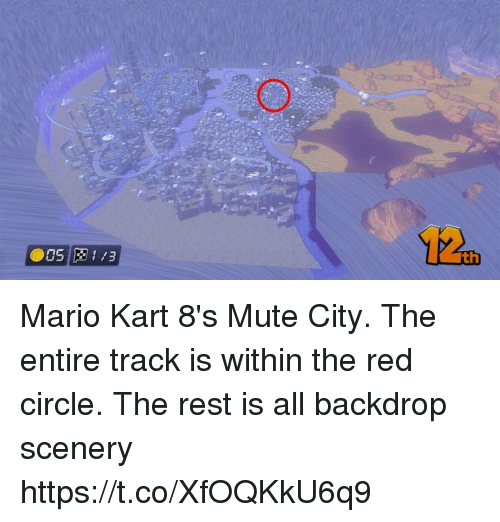 Mario Kart, Mario, and Mute: 12  th Mario Kart 8's Mute City. The entire track is within the red circle. The rest is all backdrop scenery https://t.co/XfOQKkU6q9