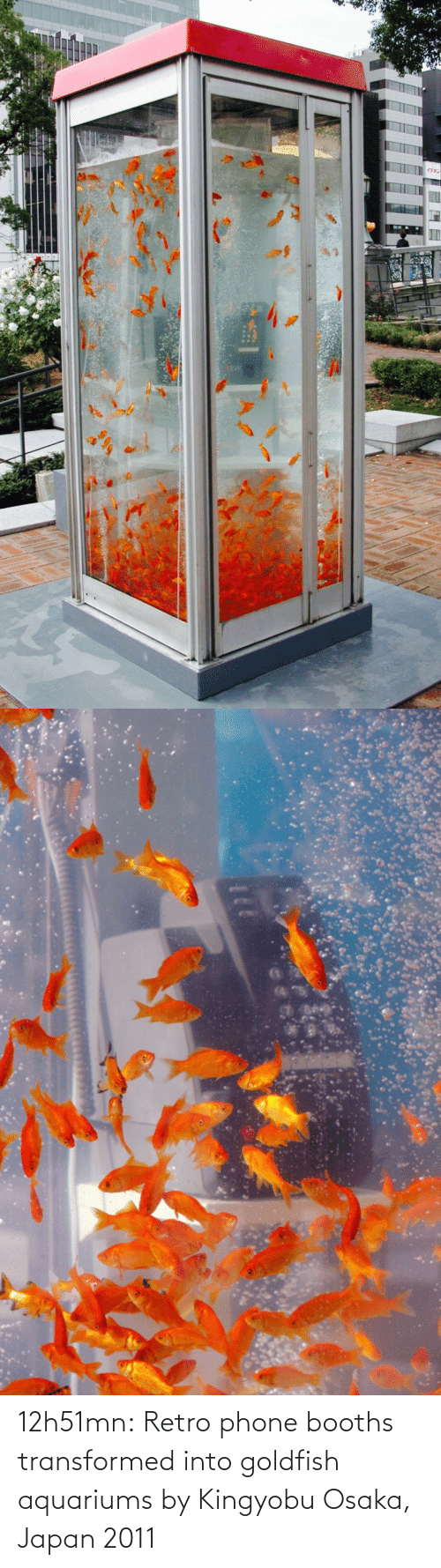 Goldfish: 12h51mn:  Retro phone booths transformed into goldfish aquariums by Kingyobu Osaka, Japan 2011