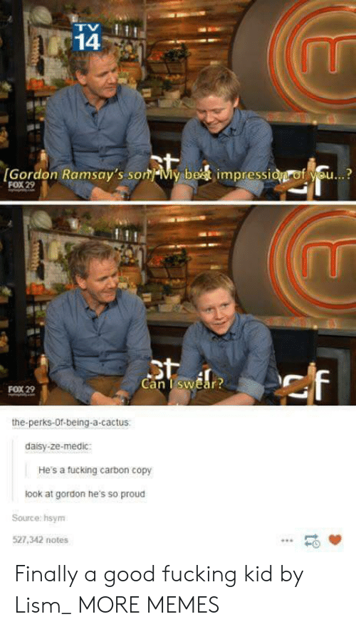 Dank, Fucking, and Memes: 14  [Gordon Ramsay's som-My be  impressi  f se..?  FOX 29  Can TswEar  FOX 29  the-perks-Of-being-a-cactus  daisy-ze-medic:  He's a tucking carbon copy  look at gordon he's so proud  Source: hsym  527,342 notes  -0 Finally a good fucking kid by Lism_ MORE MEMES