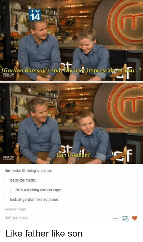 Fucking, Proud, and Fox: 14  Gordon Ramsay's sonMy bet impressid of you..?  FOX 29  Can Tswear  FOX 29  the-perks-0f-being-a-cactus  daisy-ze-medic  He's a fucking carbon copy  look at gordon he's so proud  Source: hsym  527,342 notes  HO Like father like son