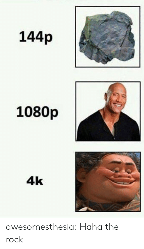 The Rock: 144p  1080p  4k awesomesthesia:  Haha the rock