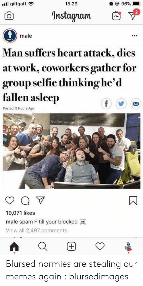 Instagram, Memes, and Selfie: 15:29  @ 96%  giffgaff  Instagram  Tmale  OMALE  Man suffers heart attack, dies  at work, coworkers gather for  group selfie thinking he'd  fallen asleep  f  Posted: 9 Hours Ago  Bofficial.agnes  Q V  19,071 likes  male spam F till your blocked  View all 2,497 comments  (+ Blursed normies are stealing our memes again : blursedimages