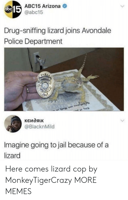 Going To Jail: 15  ABC15 Arizona  @abc15  Drug-sniffing lizard joins Avondale  Police Department  @BlacknMild  Imagine going to jail because of a  lizard Here comes lizard cop by MonkeyTigerCrazy MORE MEMES