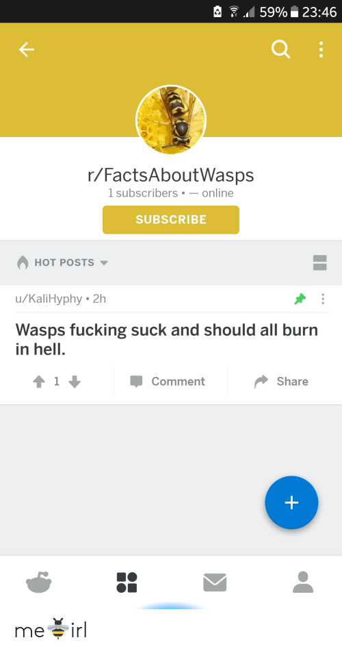burn in hell: 159% 23:46  r/FactsAboutWasps  1 subscribers-online  SUBSCRIBE  HOT POSTS  u/KaliHyphy 2h  Wasps fucking suck and should all burn  in hell.  Comment  Share me🐝irl