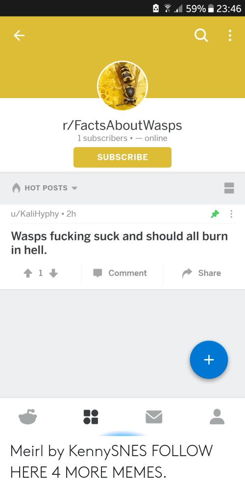 burn in hell: 159% 23:46  r/FactsAboutWasps  1 subscribers-online  SUBSCRIBE  HOT POSTS  u/KaliHyphy 2h  Wasps fucking suck and should all burn  in hell.  Comment  Share Meirl by KennySNES FOLLOW HERE 4 MORE MEMES.