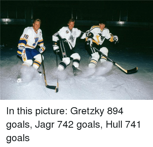 Goals, Jagr, and Picture: 16 In this picture:  Gretzky  894 goals, Jagr 742 goals, Hull 741 goals