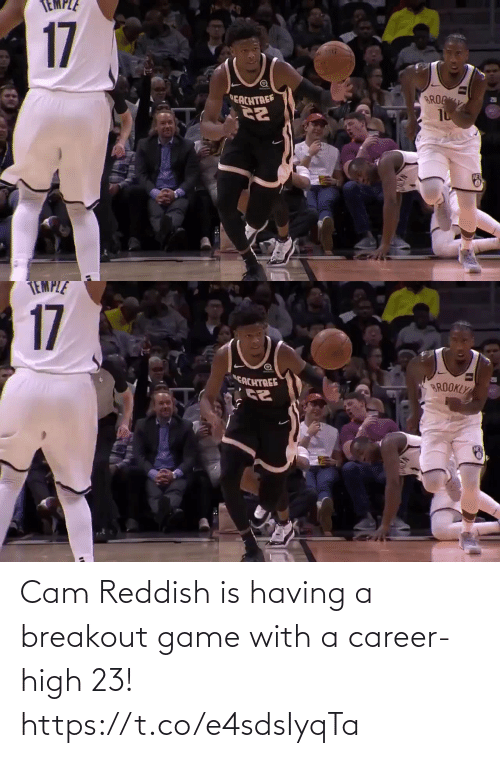 Memes, Game, and 🤖: 17  BROC  EACHTREE   TEMPLE  17  CACHTREE  BROOKLY Cam Reddish is having a breakout game with a career-high 23!  https://t.co/e4sdsIyqTa