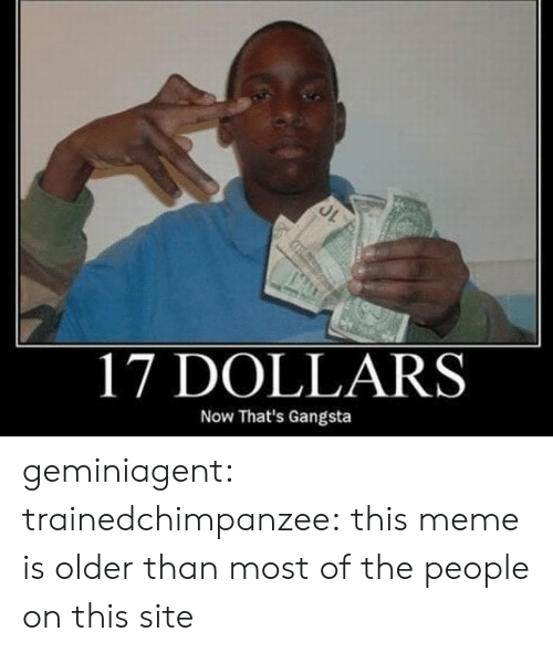 Gangsta, Gif, and Meme: 17 DOLLARS  Now That's Gangsta geminiagent:  trainedchimpanzee:  this meme is older than most of the people on this site