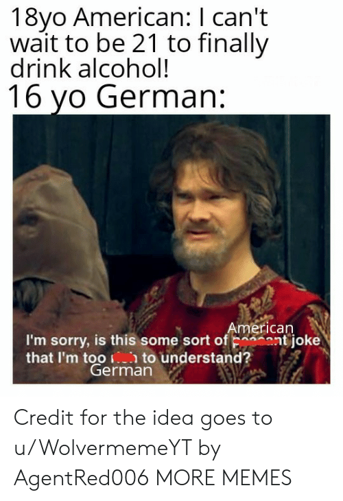 Dank, Memes, and Sorry: 18yo American: I can't  wait to be 21 to finally  drink alcohol!  16 yo German:  I'm sorry, is this some sort of ont joke  that Im t0erimato understand? Credit for the idea goes to u/WolvermemeYT by AgentRed006 MORE MEMES