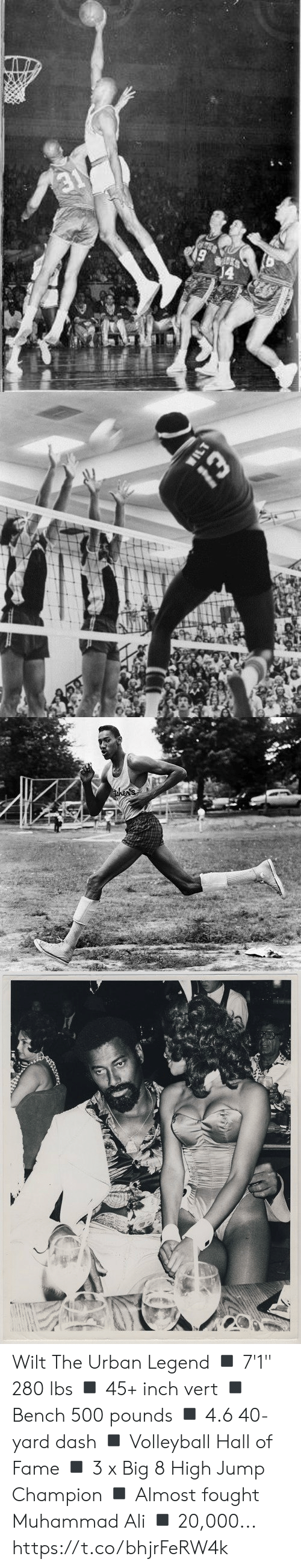 """Volleyball: 19   WILT  Whe   then's Wilt The Urban Legend  ◾️ 7'1"""" 280 lbs ◾️ 45+ inch vert ◾️ Bench 500 pounds ◾️ 4.6 40-yard dash ◾️ Volleyball Hall of Fame ◾️ 3 x Big 8 High Jump Champion ◾️ Almost fought Muhammad Ali ◾️ 20,000... https://t.co/bhjrFeRW4k"""