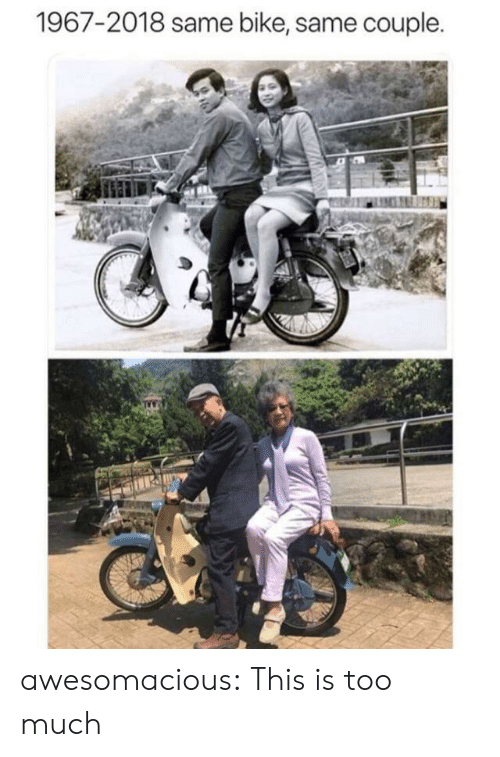 Too Much, Tumblr, and Blog: 1967-2018 same bike, same couple. awesomacious:  This is too much