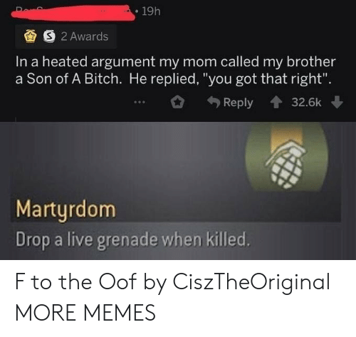 "Heated: 19h  S 2 Awards  In a heated argument my mom called my brother  a Son of A Bitch. He replied, ""you got that right"".  Reply  32.6k  Martyrdom  Drop a live grenade when killed. F to the Oof by CiszTheOriginal MORE MEMES"