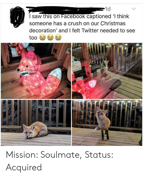 Decoration: 1d  I saw this on Facebook captioned l think  someone has a crush on our Christmas  decoration' and I felt Twitter needed to see Mission: Soulmate, Status: Acquired