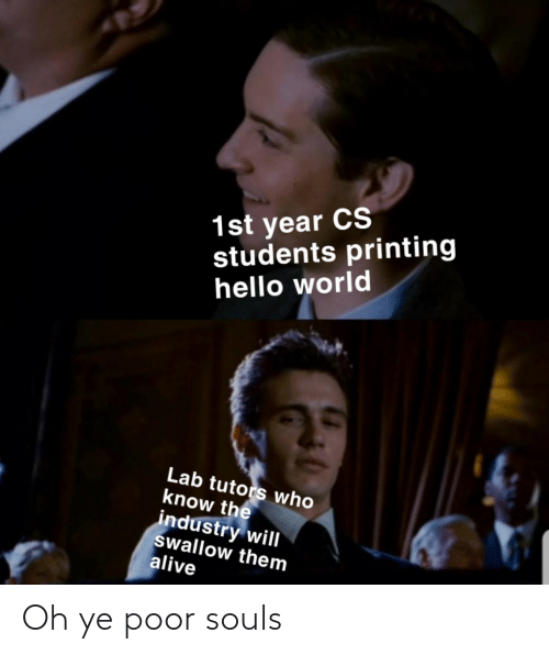 Industry: 1st year CS  students printing  hello world  Lab tutors who  know the  industry will  swallow them  alive Oh ye poor souls
