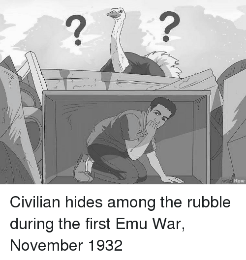 emu: 2  How Civilian hides among the rubble during the first Emu War, November 1932