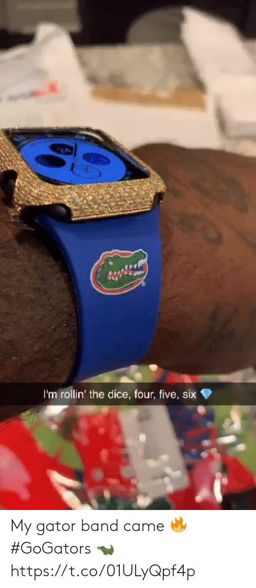 rollin: 2  I'm rollin' the dice, four, five, six My gator band came 🔥 #GoGators 🐊 https://t.co/01ULyQpf4p