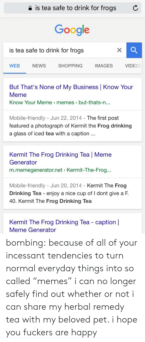 """Drinking, Google, and Kermit the Frog: 2 is tea safe to drink for frogs  C  Google  is tea safe to drink for frogs  WEB  NEWS  SHOPPING  IMAGES  VIDEOS  But That's None of My Business Know Your  Meme  Know Your Meme memes>but-thats-n  ...  Mobile-friendly - Jun 22, 2014- The first post  featured a photograph of Kermit the Frog drinking  a glass of iced tea with a caption  Kermit The Frog Drinking Tea 